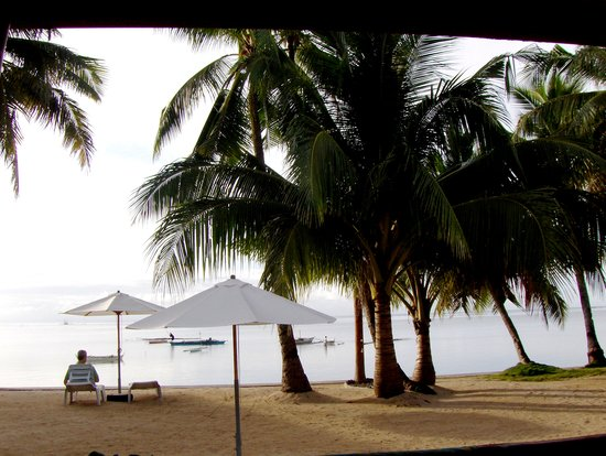 Maia's Beach Resort: a view from the cottage