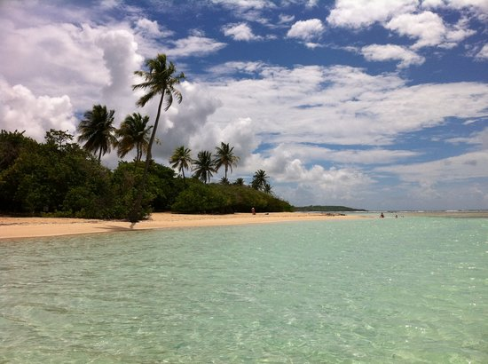 Residence le Zandoli: plage du bois jolan (ste anne)