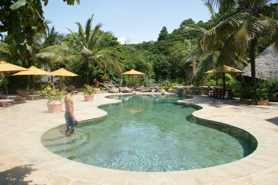 The Sands At Chale Island: pool