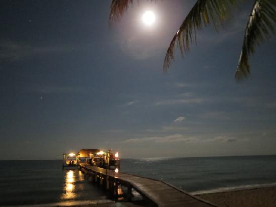 Hamanasi Adventure and Dive Resort: The view of the dock at night from the pool