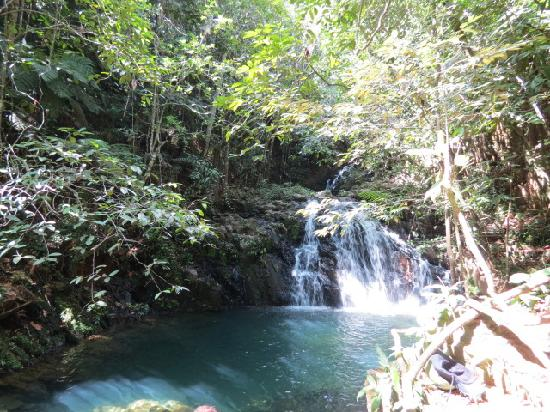 Hamanasi Adventure and Dive Resort : The reward at the top of the Mayflower hike