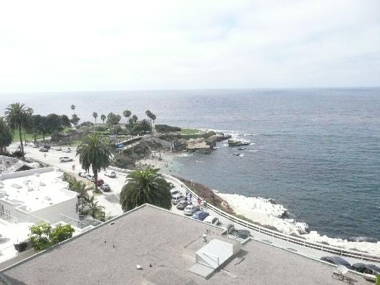Coastal San Diego Tours to La Jolla & Torrey Pines with TourGuideTim: La Jolla coat