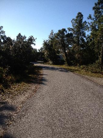 Lake Manatee State Park: road leading to campsites