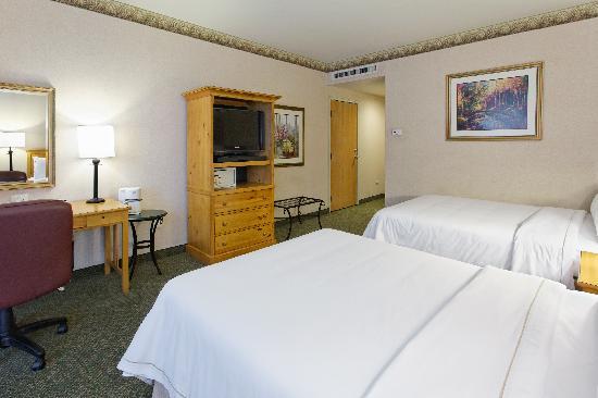 Holiday Inn Express Guanajuato: habitación doble/ double room
