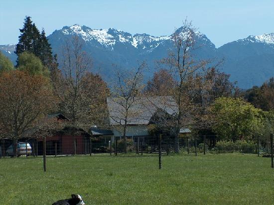 Awapiriti Lodge : Beautiful background