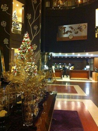 Hotel Plaza Andorra: entradA