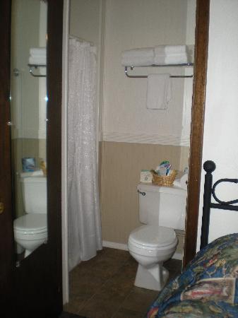 Alpine Motel: Dusche mit WC