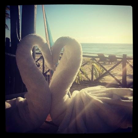 Azucar Hotel: the swans on the balcony
