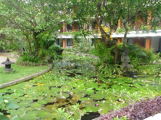 บาหลี การ์เด้น บีช รีสอร์ท: garden/pond view