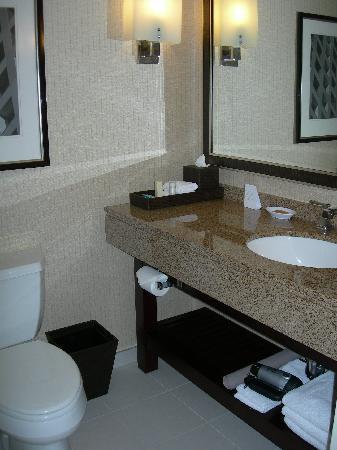 Hyatt Regency Cambridge, Overlooking Boston: Nice bathroom