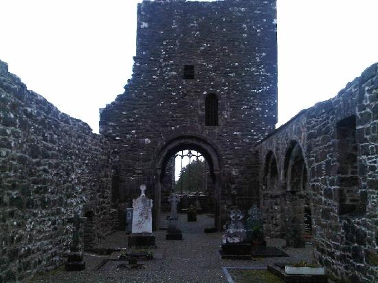 Creevelea Friary: A view of the interior structures