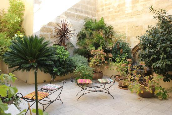Autour du Petit Paradis : 美丽的小庭院