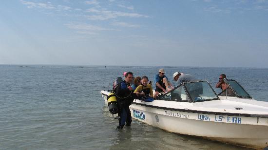Club Amigo Carisol Los Corales: Diving