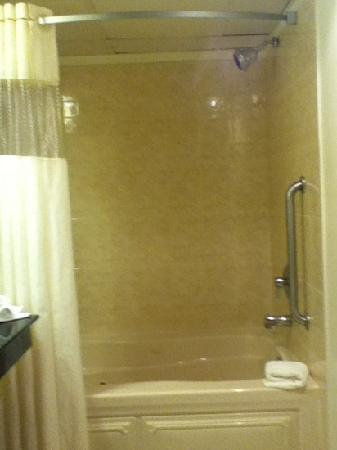 BEST WESTERN Garden State Inn: nice shower
