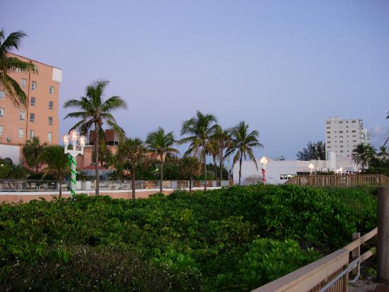 Hollywood Beach Resort Cruise Port Hotel: Looking North