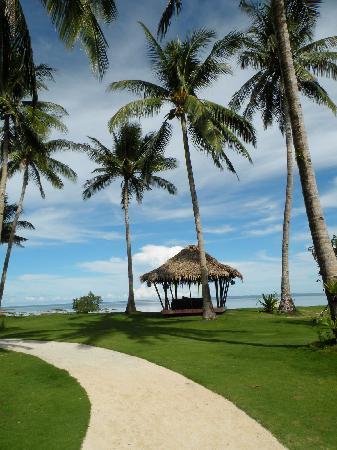 Kalinaw Resort: Love the view