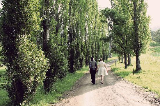 Minimbah Farm Cottages: One of our wedding photos