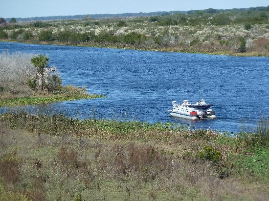 KICCO Wildlife Management Area : and the Kissimmee River proper