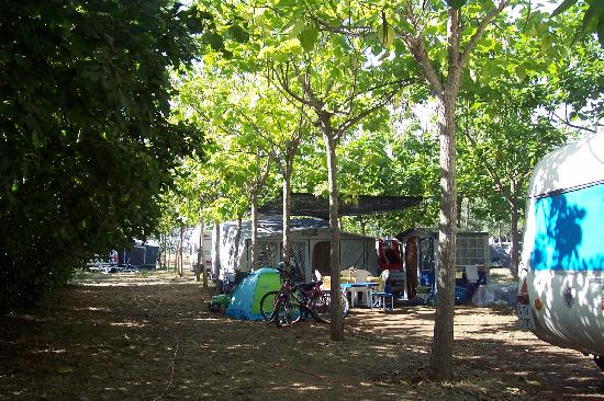 Vinyols Camp: Zona de caravanas