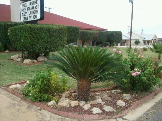 Royal Inn Pearsall: LANDSCAPING
