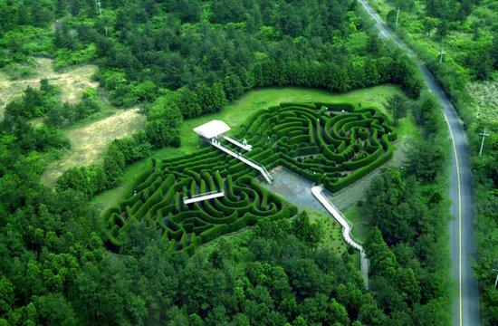 Kimnyoung Maze Park: Jeju Kimnyong Maze Park