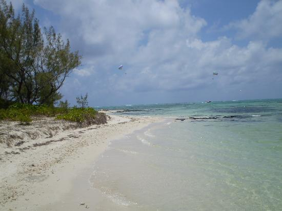 Pearle Beach Resort & Spa: Ile aux Cerf