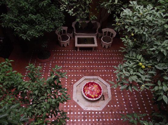 Riad Samsli: Pink fontaine