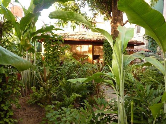 Casa Verano Azul: patio