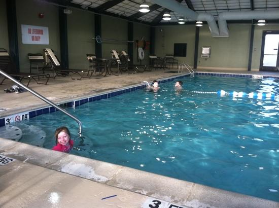 Hyatt Place Detroit/Livonia: having fun in the pool