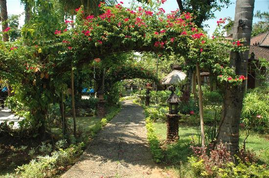 Beautiful garden view.