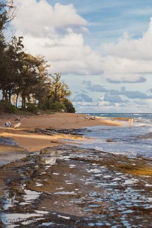‪‪17 Palms Kauai‬: The beach within walking distance of the cotteges.‬