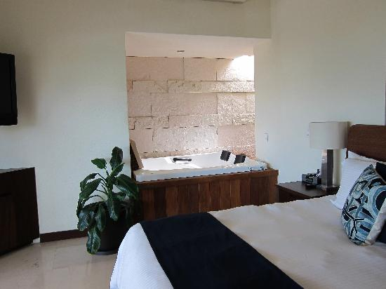 Vallarta Gardens, A Boutique Private Residence Club: Palama Azul- Master bedroom