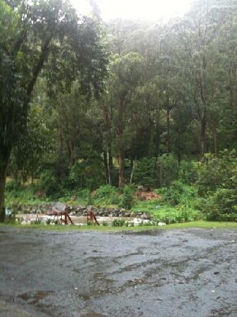 Casa Grande Bambito Highlands Resort: vista del rio