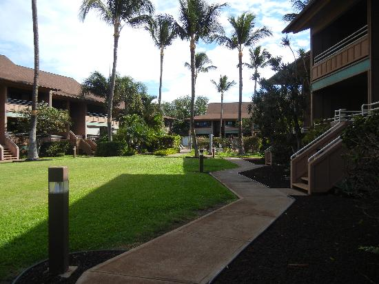 Kihei Bay Vista: The well kept grounds