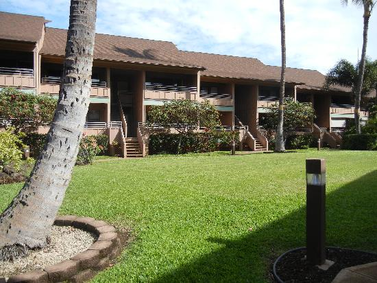 Kihei Bay Vista: The grounds and condo units