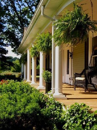 GreenRose of Raus: Front Porch
