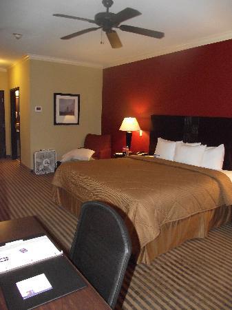 Comfort Inn: Very nice room.