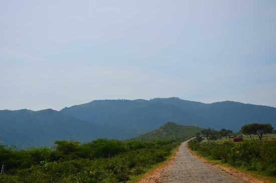 Himada Gopalswamy Temple: Approach road at the foothills