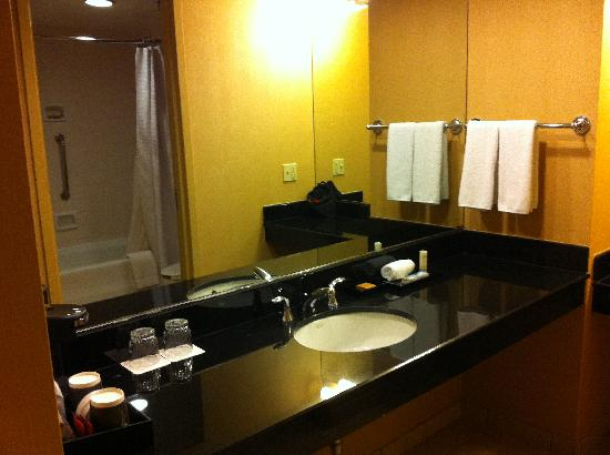 Hyatt Regency North Dallas/Richardson: Bathroom 1