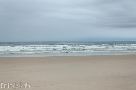 Nice clean beach 400m (no animals permitted) - Picture of Ballina