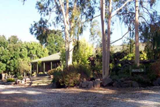 Kooringal Homestead Bed & Breakfast: The Homestead
