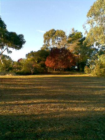 Kooringal Homestead Bed & Breakfast: autumn at Kooringal
