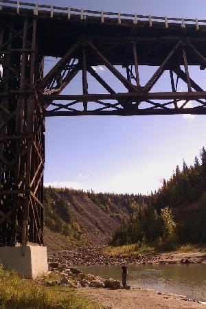 Kiskatinaw Bridge: Its not small!
