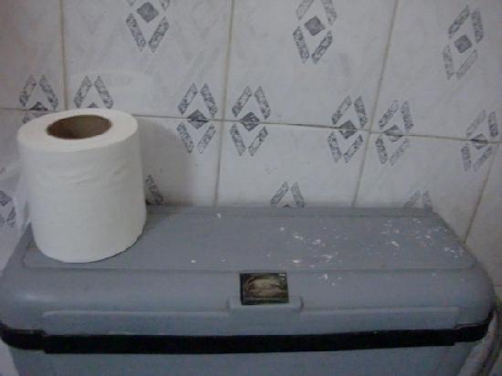 Hotel Rak International: Moldy ceiling falling down on toilet