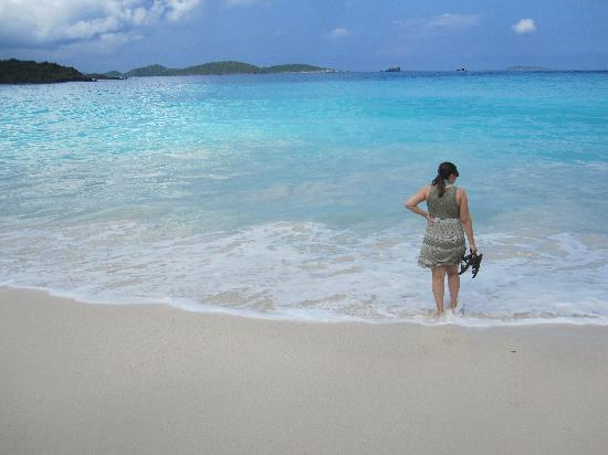 Hillcrest Guest House: Trunk Bay beach was practically deserted