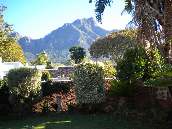 Pastis: Cape Mountains form the Backdrop