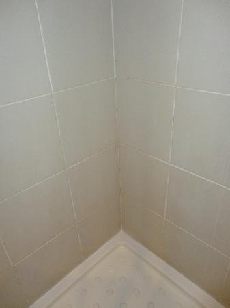 Stay Easy Rustenburg: Mouldy Grouting in the Shower