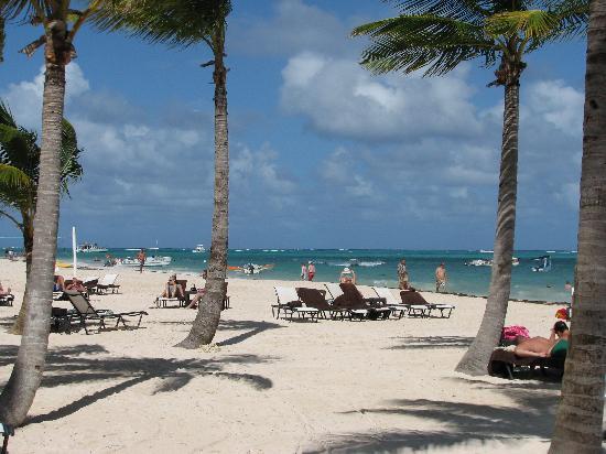 Secrets Royal Beach Punta Cana: A praia é excelente, com exceto os sargaços que são retirados diariamente da praia deste hotel.