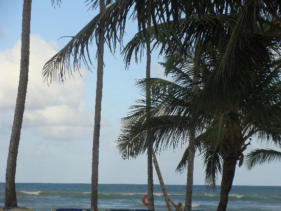 Dreams Punta Cana Resort & Spa: Palms at the beach