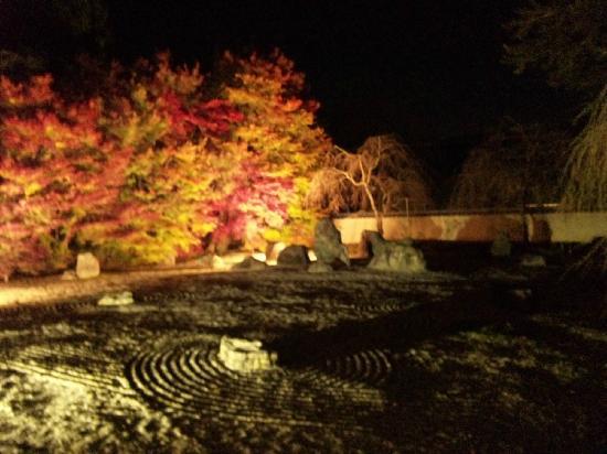 อิวาคุระ จิซโซอิน: 枯山水とライトアップされた紅葉